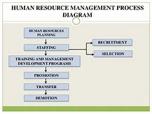 Human resource planning diagram 100 images figure 4 human resource planning diagram images for human resource planning process diagram www ccuart Image collections