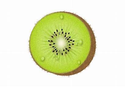 Kiwi Vector Fruit Half Fruits Graphics Vecteezy