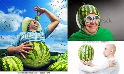 Watermelon Ridiculous Strange Dailycal