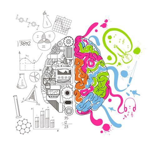 analytical creative brain bigwik creative brain illustration