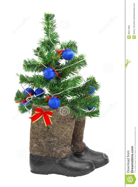christmas tree  boots royalty  stock images image
