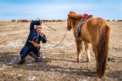 mongolian horsemen nomadic much horses steppes mongolia alive applications