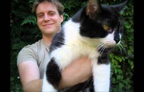 biggest house cat in the world 2017 2020 other images biggest domestic cat in