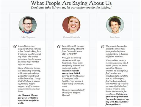 awesome examples  website testimonials