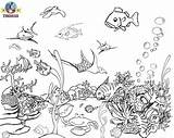 Under Sea Coloring Pages sketch template