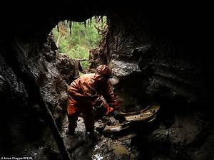 Photographs reveal illegal mining and selling of woolly ...