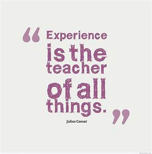Experience Juli... Funny Work Experience Quotes