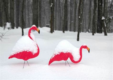 flamingo christmas ornaments images  pinterest