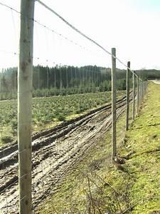 Piquet De Cloture Bois Acacia : piquet de cl ture ~ Dailycaller-alerts.com Idées de Décoration