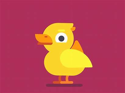 Duck Sticker Animated Animation Face Shapes Dribbble