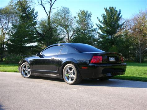 2001 ford mustang coupe 2001 ford mustang pictures cargurus