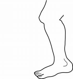 Chicken leg clip art image #30800