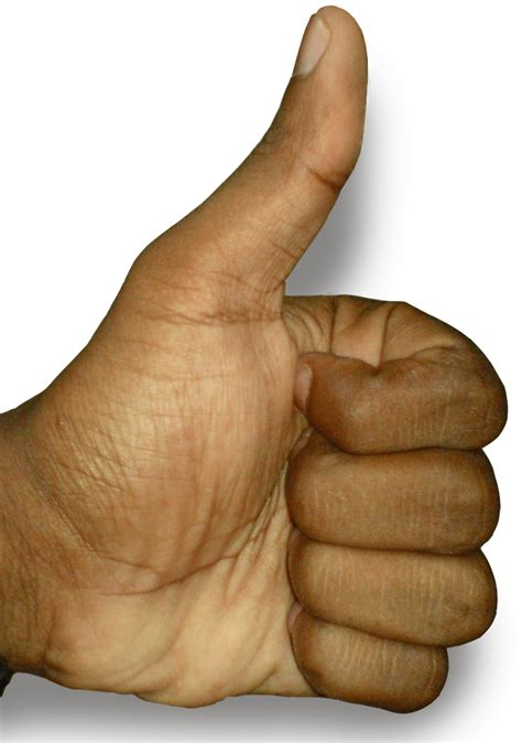 Image Thumbs Up File The Thumbs Up Position Jpg