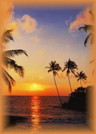 Tropical Mural Sundown Fond Mer Murals Ecran