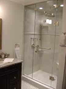 Frameless Glass Shower Door