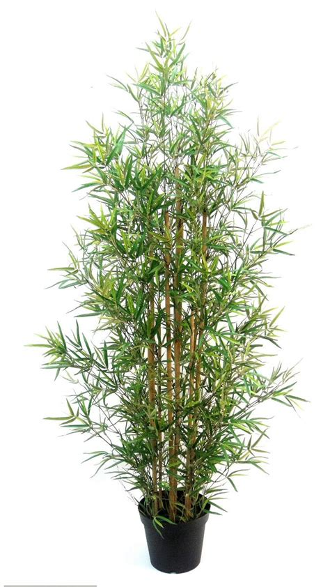 artificial large traditional bamboo tree  evergreen direct