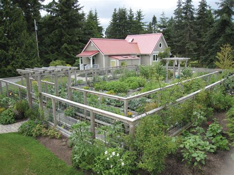 how to keep deer out of vegetable garden keeping deer out of the garden arcadia farms