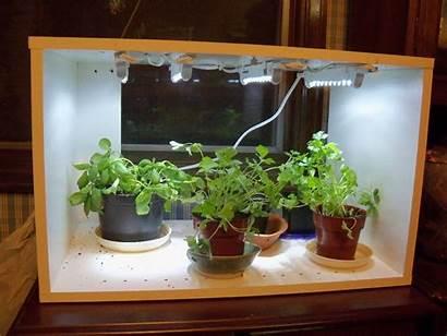Indoor Herb Garden Grow Vegetable Gardening Lights