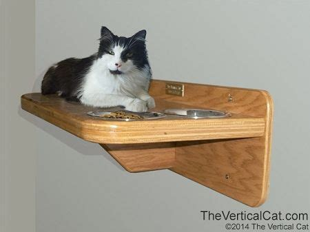 elevated cat food table wall mounted cat feeding station shelf the vertical cat