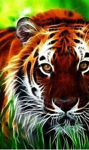 Tiger 3d Computer Digital Hd Wallpaper 2560x1440 ...