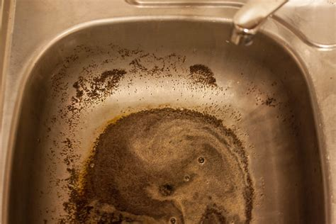 coffee grounds down sink how to pour coffee grounds into a kitchen sink leaftv