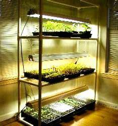 pvc pipe ideas  outdoor living  gardening