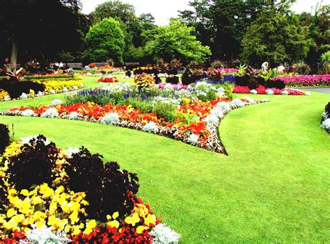 flower beds for beginners flower garden ideas for beginners home decorating ideas and tips goodhomez com