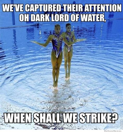 Swimming Memes Funny - synchronized swimming memes image memes at relatably com