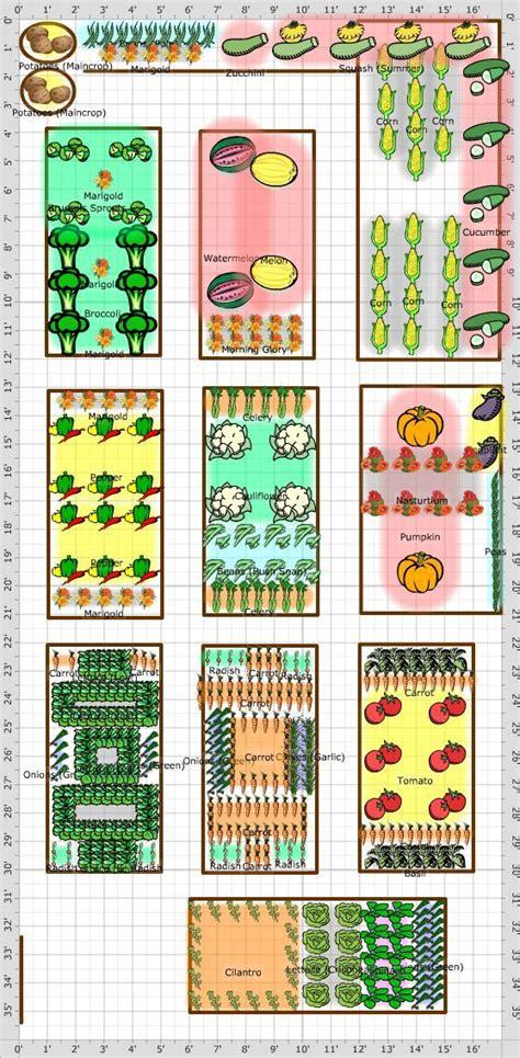 garden layout companion gardening pinterest