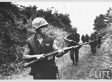 marine M14 The Truth About Guns
