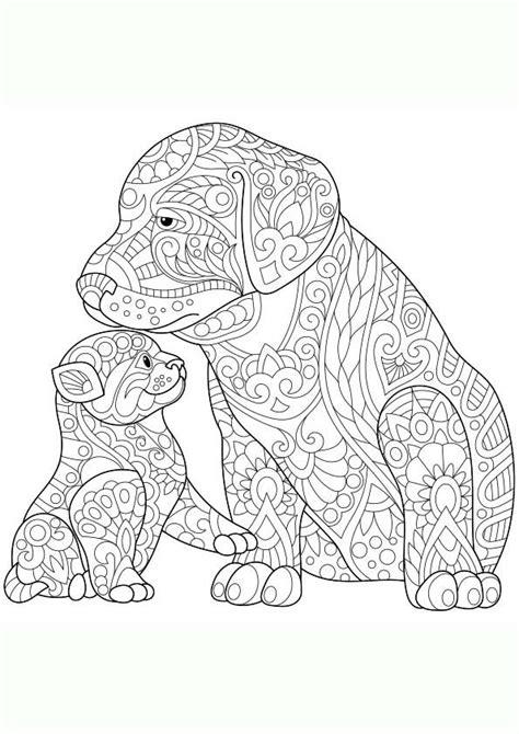 dibujo  colorear mandala ilustracion silueta de dos