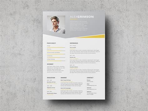 11592 well designed resumes 70 well designed resume exles for your inspiration