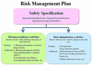 Business risk management plan template for Documents for risk management plan