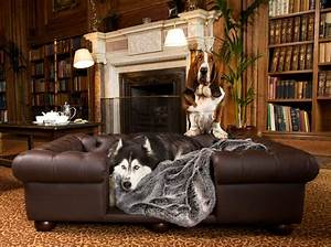 Dog friendly hotel cliveden house berkshire all four paws for Dog room furniture