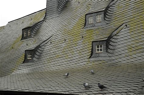 Is Moss On Roof Tiles A Problem Master Roofing And Siding Alexandria Va How To Install Asphalt Shingles Low Pitch Roof North Coast Supply Carol Stream Red Inn Suites Houston Humble Iah Airport Tx South San Francisco Ca Best Coating For Metal Rubber Cleaner Reviews Dog House