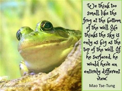 Funny Quotes About Frogs. QuotesGram