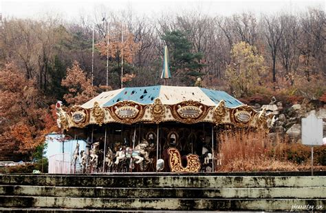 cuisine lotte yongma land an abandoned amusement park stuck in the 80s