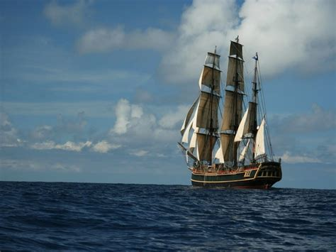 hms bounty sinking book famed ship falls victim to s wrath 14 rescued