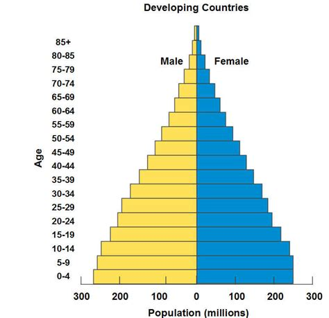Age Structure Diagram by Population Age Structure