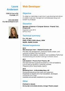 Mini-cv : brief summary of the CV Resume/CV + Cover