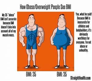 Fat Protein Carb U0026 39 S  Bmi