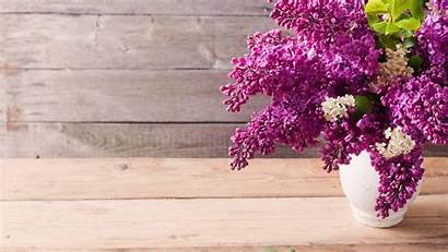 Lilac Wallpapers Flowers Vase