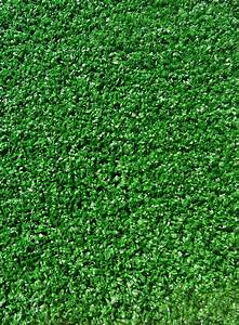 tapis gazon synthetique giarnido vert With tapis pelouse synthétique