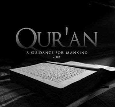 quran quotes translated  english quotesdownload