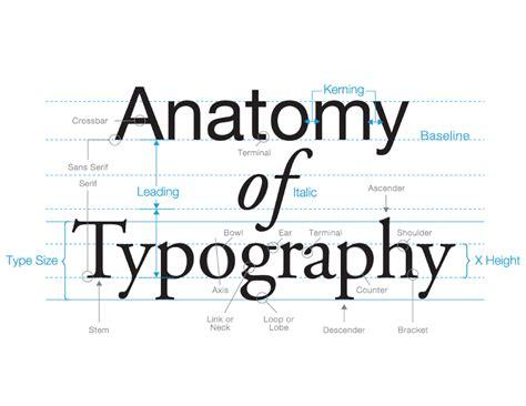typography stem 28 images the basics of typography make lemonade illustration of technology
