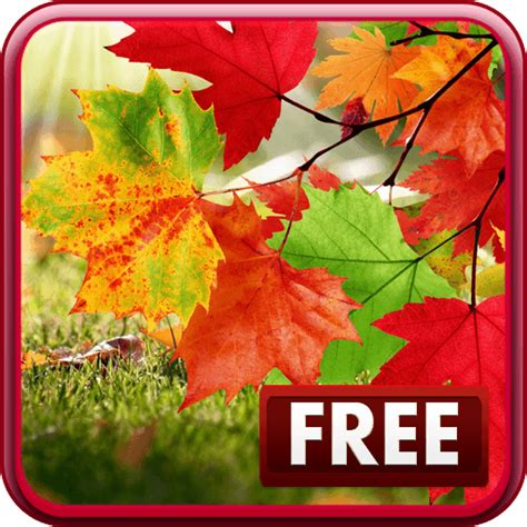 Falling Leaves Live Fall Backgrounds by Free Falling Autumn Leaves Android Live Wallpaper