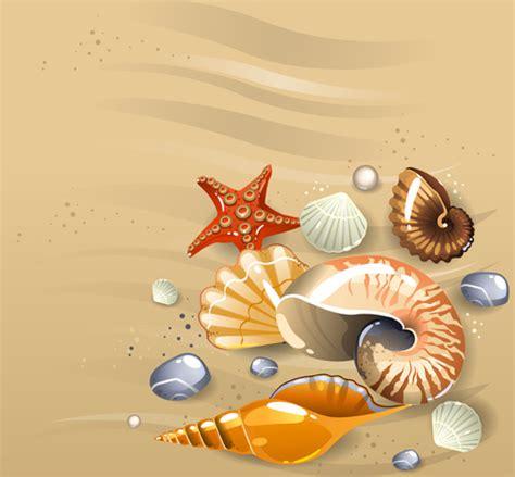 seashell svg  vector    vector