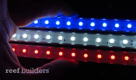 red white and blue lights hands on with koven aquatics red white and blue led