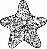 Starfish Coloring Zentangle Printable Pages Intricate Animals sketch template