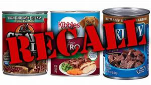 recall alert gravy train kibbles n bits skippy dog foods euthanasia